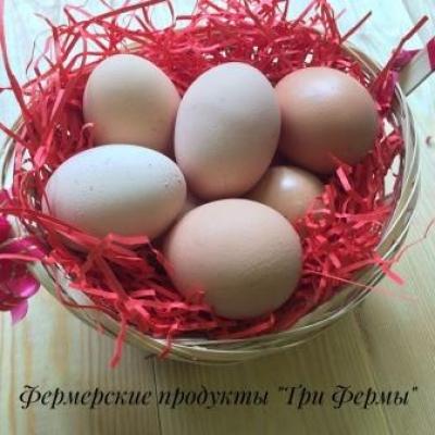 Яйца деревенские